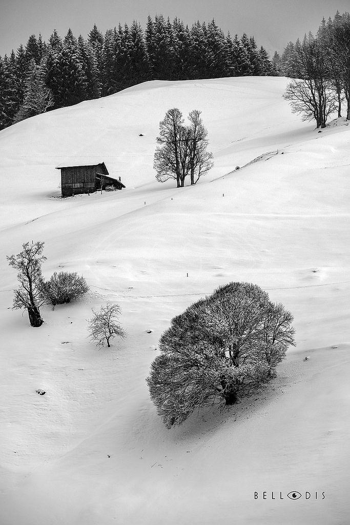 https://flic.kr/p/U26F6f | 170137  Winter Alpine landscape
