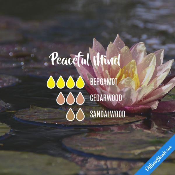 Peaceful Mind - Essential Oil Diffuser Blend