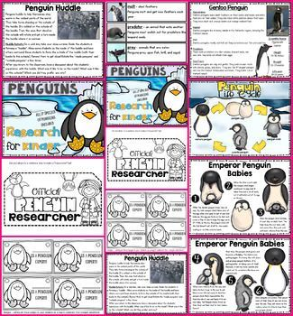 Penguin Research for Kinder (scheduled via http://www.tailwindapp.com?utm_source=pinterest&utm_medium=twpin&utm_content=post132474839&utm_campaign=scheduler_attribution)