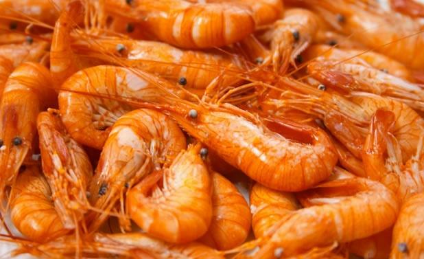 Los cangrejos y probablemente otros crustáceos que forman parte de nuestra dieta son sensibles ante situaciones dolorosas. Un estudio reveló que el cangrejo de tierra, un pariente cercano de las especies que se usan para la alimentación, responde ante descargas eléctricas y en lo posible las evita.