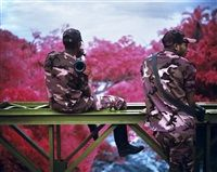 Peace Attack, Virunga National Park, North..., 2012