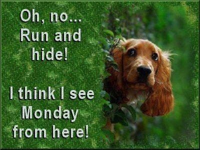 I can see Monday from here