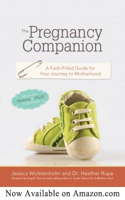 The Pregnancy Companion: A Faith-filled guide for your journey into motherhood. // Love this book for expecting mothers or those trying to conceive. -adriel