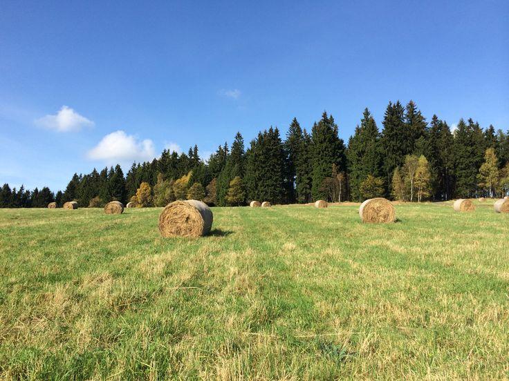 Sunny October in Krkonoše