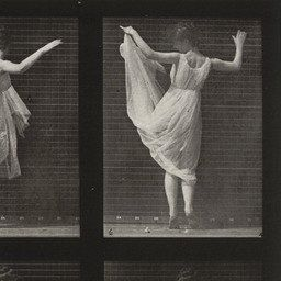 Eadweard J. Muybridge. Woman Dancing (Fancy): Plate 187 from Animal Locomotion (1887). 1884-86 | MoMA [Eadweard J. Muybridge (1830–1904) was a photographer, the first to develop photographic sequences of moving objects.]