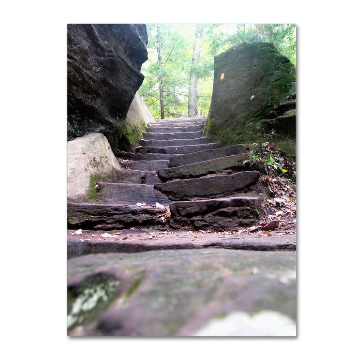 Monica Fleet 'Endless Stairway' Art