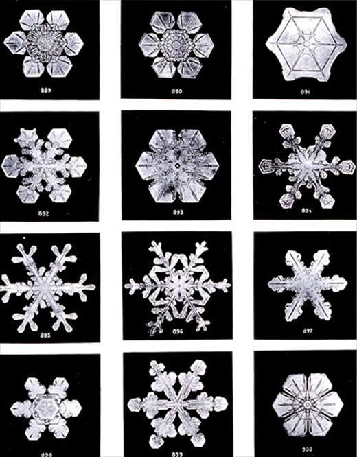 """These images are part of a long term project undertaken by the American photographer Wilson Bentley, who perfected a process of catching snowflakes on black velvet, and shooting them before they melted away or sublimated. Photographing his first snowflake in 1885, Bentley would go on to capture more than five thousand pictures a project that was both a representation of the passion he had for the """"tiny miracles of beauty"""", and also an effort to discover if any two snowflakes are ever the…"""