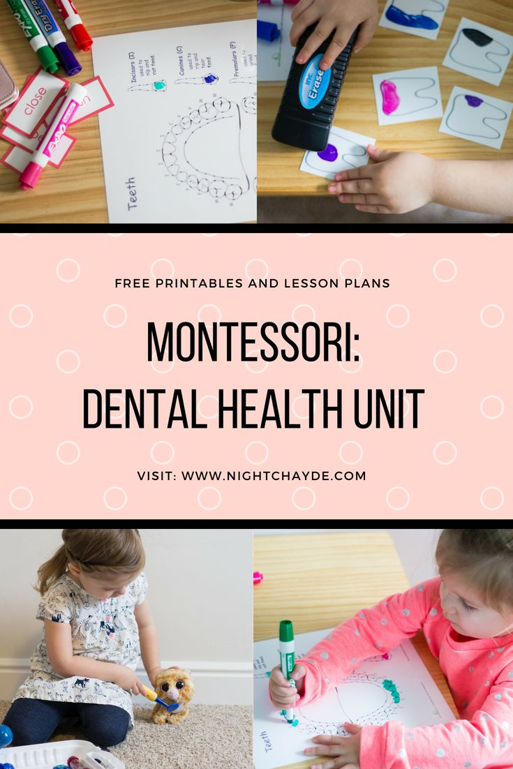 Home Montessori Preschool Dental Health Unit Dental