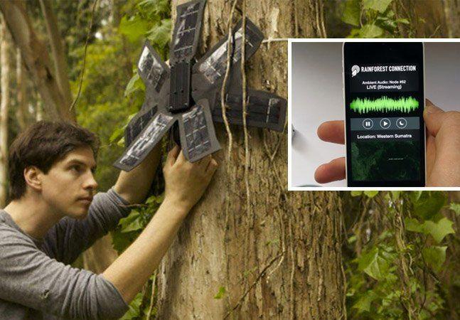 """Já imaginou que seu celular """"velho"""" pode monitorar o desmatamento ilegal de árvores? O desmatamento aqui no Brasil é um tema preocupante, mas nos EUA esse tipo de atividade também é bastante comum, e o efeito disso todos sabemos: mudanças climáticas e extinção drástica de espécies. Os desenvolvedores do pioneiro projeto Rainforest Connection pensaram em uma forma simples e barata para ajudar a monitorar a derrubada ilegal de árvores - eles transformaram celulares antigos em aparelhos…"""