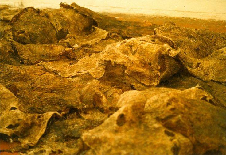 Nuno Ramos - Site do Artista Nuno Ramos - www.nunoramos.com.br Pele 3 (Cobra) - 1989 Breu, óleo, algodão gomado e tela de arame. 50 X 600 X 400 cm.