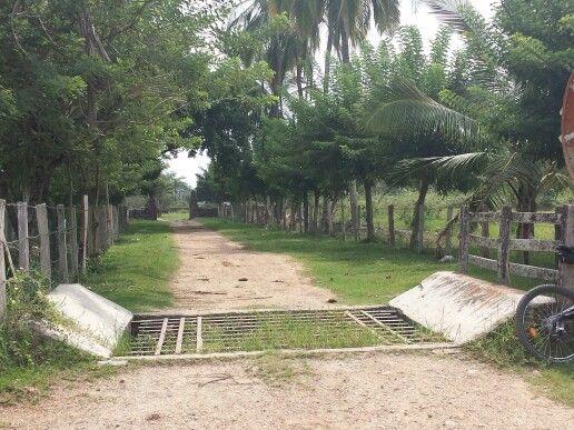 Ruta Ibagué- Doima
