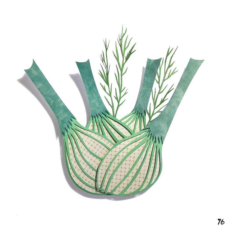 7⃣6⃣: Fennel #100paperfruitsandveggies #the100dayproject #fennel #paperart #papercut #papercraft #foodillustration #illustration #health #f52grams #howisummer #foodstand #yahoofood #foodgays #buzzfeast #feedfeed #lgenpaper #100daysoffruitsandveggies