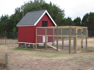 1000 Images About Chicken Coop On Pinterest Cute