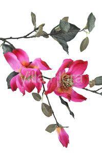 Magnolia 95 cm, różowa