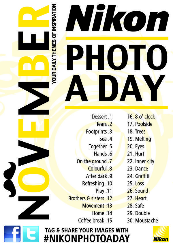 Photo A Day - November