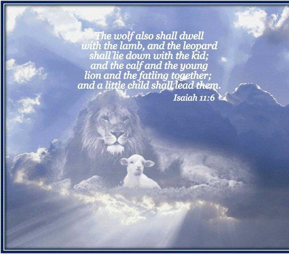 and the wolf also shall dwell with the lamb, and the leopard shall lie down with the kid; and the calf and the young lion and the fatling together; and a little child shall lead them. ~ Isaiah 11:6 ~