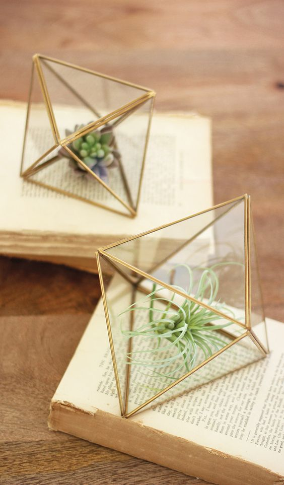Glass terrariums wedding decor / http://www.himisspuff.com/air-plants-wedding-ideas/2/