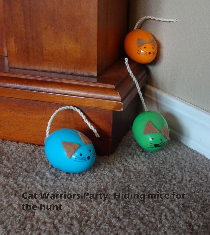 Easter egg mice hidden around the house for a Cat Warriors party game: Warrior Cats go on a hunting patrol to catch the mice. They can only be caught like a cat with their teeth by the mice's tails.