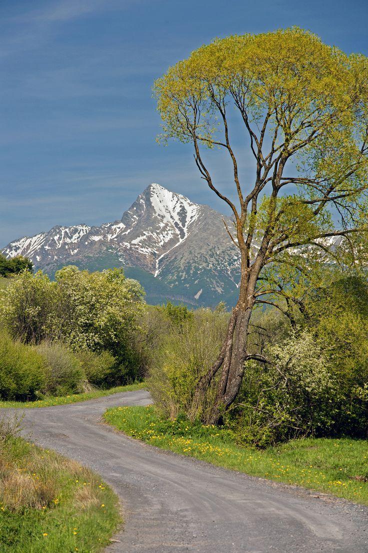Slovakia - Igor Supuka 61 - Europe,Slovak republic,High Tatras National Park, Kriváň hill