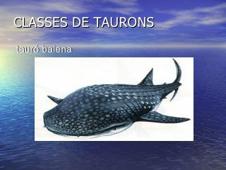 Power Taurons