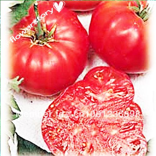 Vegetable seeds Watermelon Beefsteak Tomato 50 Seeds   Impressive!-in Bonsai from Home & Garden on Aliexpress.com | Alibaba Group