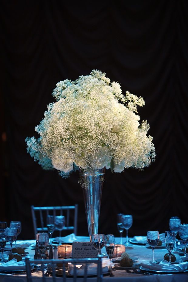 Best baby s breath inspirations images on pinterest
