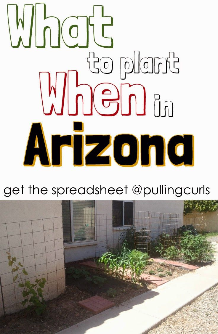 When to plant your desired items here in the hot, hot sun of Arizona (may also be helpful in other areas of the Southwest).