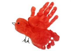 Handprint & Footprint Cardinal