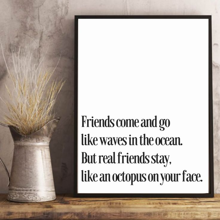 Friends come and go Like the waves in the ocean But the real one stay Like an octopus on your face
