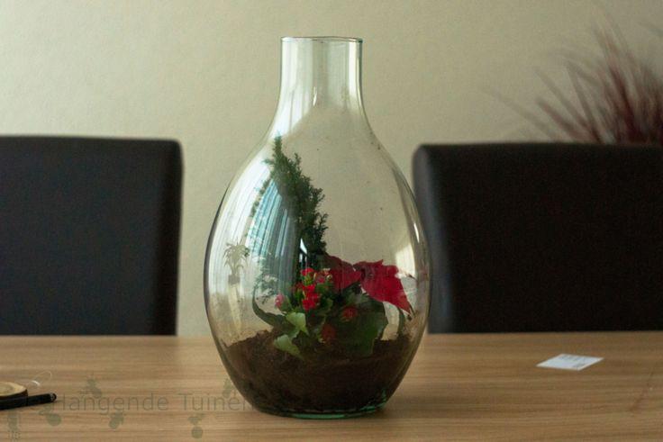 Planten in fles, in kerstsferen. #kerst #kerstdecoratie #beetjevreemd