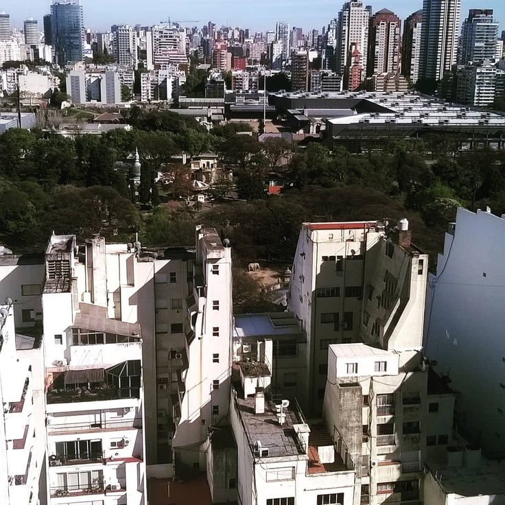 When there really is an elephant in the room.  #omg #thereisanelephant #elephant #really #forreal #forrealtho #crazy  #palermo #buenosaires #BA #view #zoo #skyline #city #citylife #backyard #high #argentina #architecture #zrvan #urbanphoto #urbanphotography #capital #construction #massive #loveit #happygirl #happymoments #happymoment