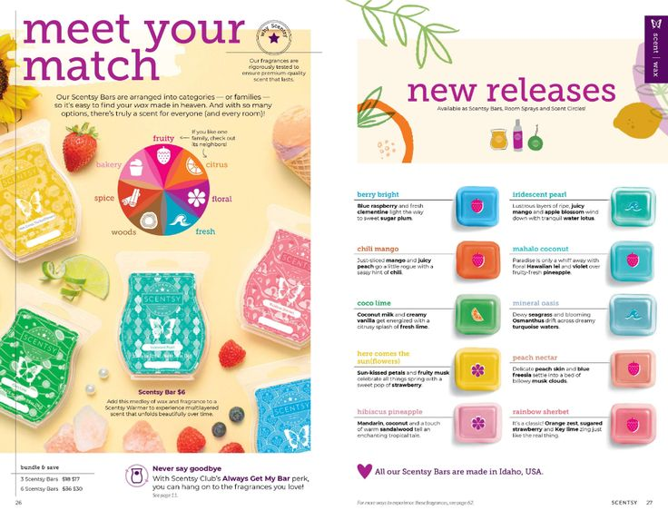 NEW! SCENTSY SPRING SUMMER 2020 CATALOG Scentsy, New