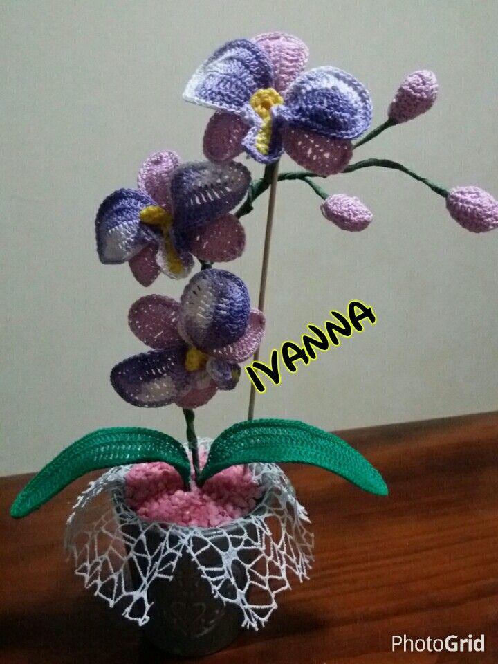 Orchidea uncinetto