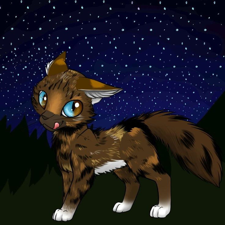 Warrior: NightFlower Her parents:SunLeaf and MoonFace. Her kits:none Her born in:Moon clan. (her Sister:Brownstripe)