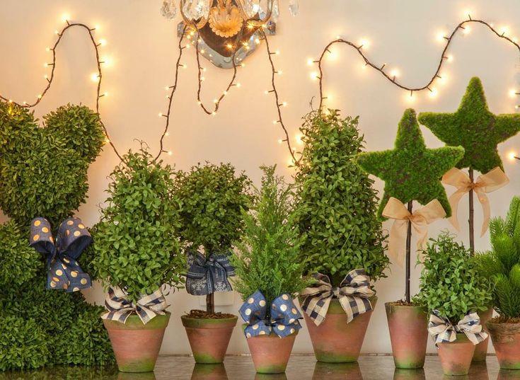 🌲🌲🌲Merry Christmas! Venha buscar o seu presente de Natal na Blue Gardenia! Caprichamos muito em uma seleção especialmente criada para as Festas de Fim de Ano , além da nossa linha de perfumaria da casa, tableware e, claro, as melhores roupas de cama! Seja bem vindo! Visite também o nosso site!  www.bluegardenia.com.br  #Natal #Presentes #Gifts #Mimos #Tableware #Aromas #BedAndBath #GabrielMonteiro #VilaNova #ShoppingJK #Santos #SuperCentroMiniBlue