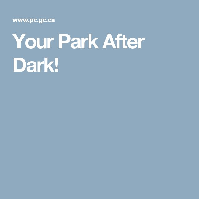 Your Park After Dark!