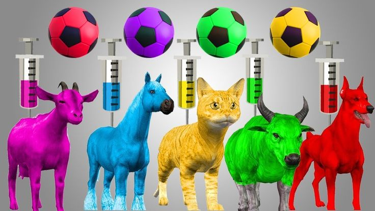 Learn Colors With Animals Syringe For Kids Babies | Learn Colors With So...