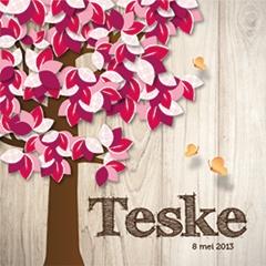 Boom Teske #geboortekaartje #birth #announcement