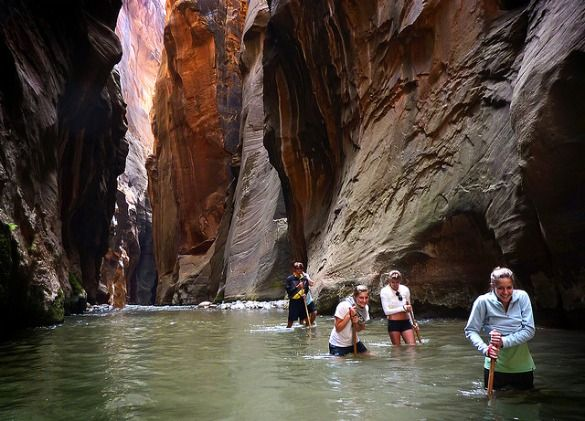 Some of the best hiking trails in the world - Zion Narrows in Utah. Hike up streams through sandstone canyons.