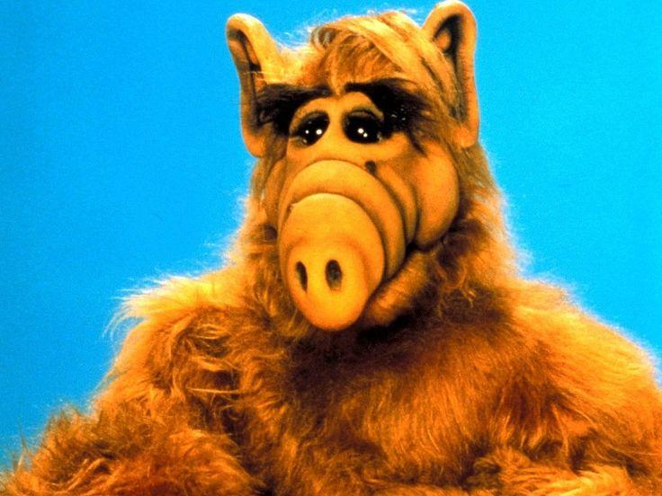 Alf #80s #throwback #throwbackthursday #Thursday #memories #childhood #nostalgia #70s #80s #90s #kids #toys #vintage #indie #boho #weheartit #tumblr #love #beauty #retro #friends #smile #happy #highschool #freshman