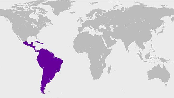Los 10 apellidos mas comunes en los países de habla hispana
