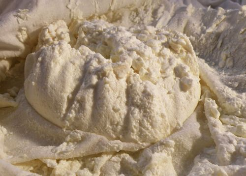 Cum se face branza de vaci - Este o sursa importanta de calciu si proteine
