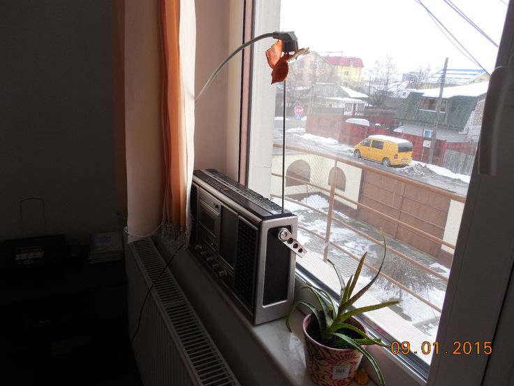 09/365 Antena de radio-amator amator :)