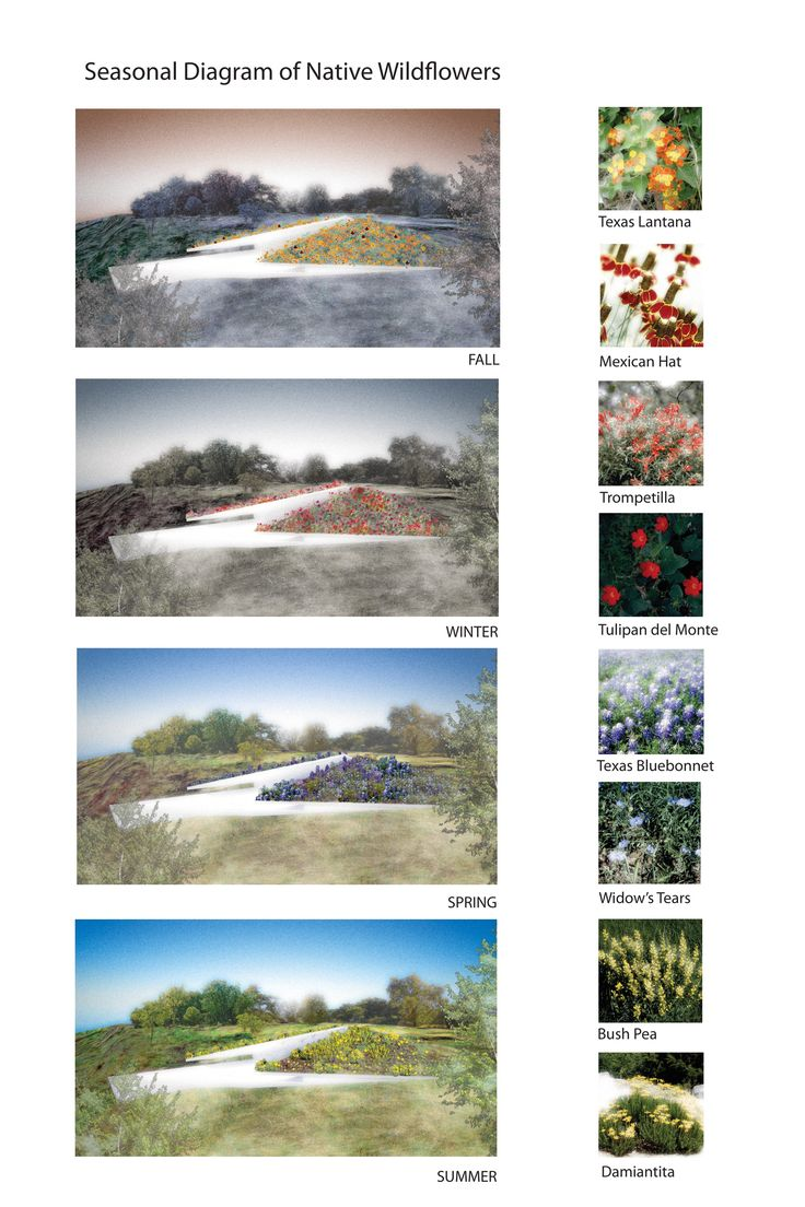 Image 30 of 35 from gallery of Edgeland House / Bercy Chen Studio. Seasons Diagram
