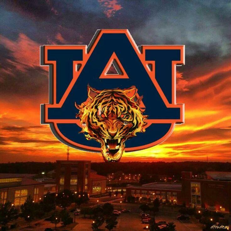 31 Best Images About Auburn University Crafts On Pinterest