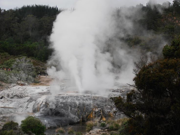 Pohutu Geyser Rotorua photo taken from the  back sliding door of our Motel