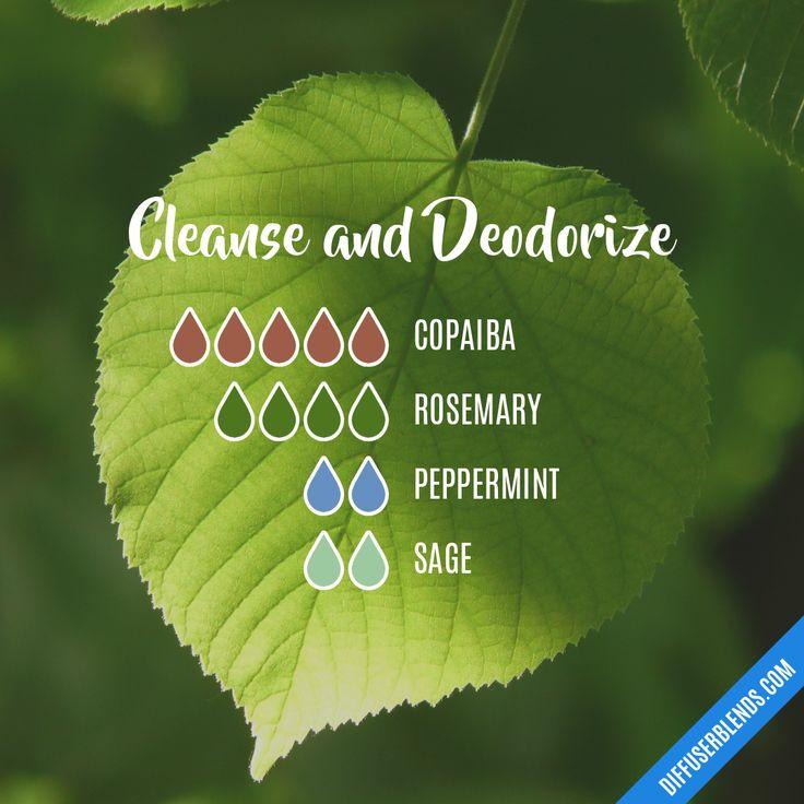 Blend Recipe: 5 drops Copaiba, 4 drops Rosemary, 2 drops Peppermint, 2 drops Sage