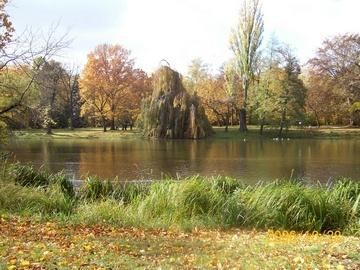 Autumn in Warszawa, Poland