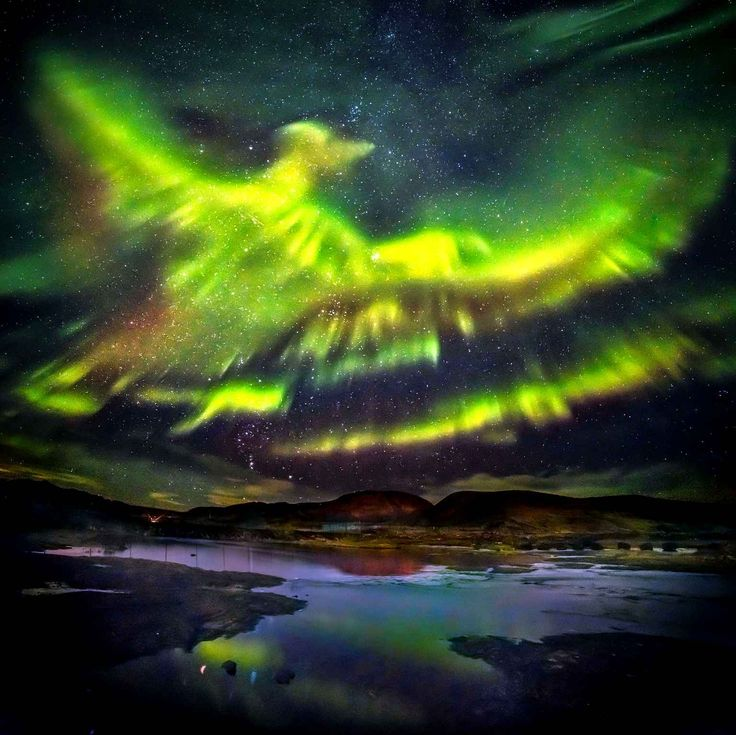 A phoenix emerges in the sky with aurora borealis in Iceland. Un phœnix se dessine dans le ciel grâce à une aurore boréale en Islande.