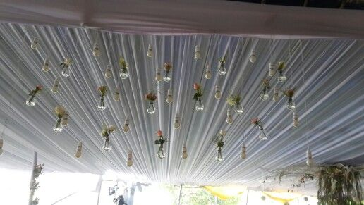 Bulbs and flowers decor